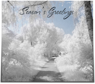 Season's Greetings snow